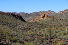 Superstition mts desert Stock Photo