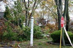 Supersturm-Sandy-` s Wind-Schaden in Babylon, NY stockbilder