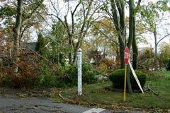 Supersturm-Sandy-` s Windschaden in Babylon-Dorf, NY lizenzfreie stockfotos