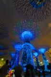 Supertree树丛夜视图滨海湾公园的6月18日, 库存照片