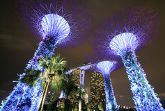 Supertree garden at night, garden by the bay. Singapore - JULY 9, 2017 : Supertree garden at night, garden by the bay Royalty Free Stock Image