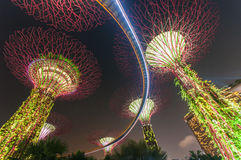 Supertree garden at night, Singapore. Supertree garden at night, taken from Singapore Royalty Free Stock Photo
