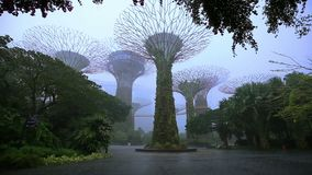 Gardens by the bay with falling rain at Singapore. Supertree of gardens by the bay with falling rain at Singapore stock video footage