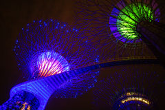 The Supertree at Gardens by the Bay seen by night Stock Photo