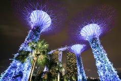 Supertree-Garten nachts, Garten durch die Bucht lizenzfreies stockbild