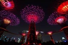 Supertree groov przy nocy oświetlenia przedstawieniem Obrazy Stock