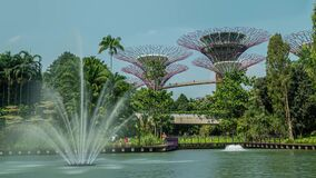 Supertree Grove at the Gardens by the Bay Fountain Time Lapse