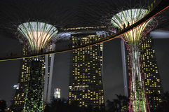 Supertree Grove at Gardens by the Bay in Singapore Stock Images