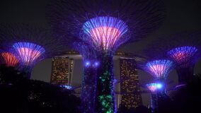 Beautiful Light Show at Supertree Grove in the Gardens by the Bay Singapore