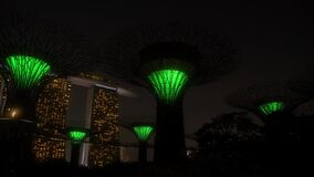 Colorful Neon Light Show at Supertree Grove in the Gardens by the Bay Singapore