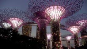 Supertree Grove and Marina Bay Sands Hotel Singapore Sunset