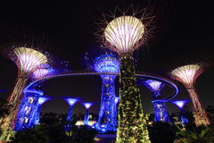 Supertree Grove at Gardens by the Bay Stock Photo