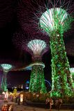 Supertree Grove at Gardens by the Bay in Singapore stock photo