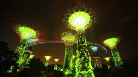 Supertree Grove light show at Gardens by the Bay in Singapore stock footage
