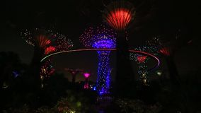 Supertree Grove light show at Gardens by the Bay in Singapore stock video footage