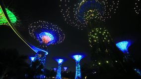 Supertree Grove light show at Gardens by the Bay in Singapore stock video