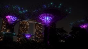 Supertree Grove Light Show at the Gardens by the Bay Singapore