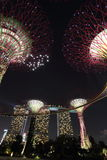 Supertree Grove with Marina Bay Sands at Night (Portrait) stock image