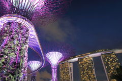 Supertree Grove and Marina Bay Sands Singapore Royalty Free Stock Photography