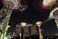 Supertree Grove mit Marina Bay Sands nachts lizenzfreies stockbild