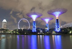 Supertree Grove and Singapore Flyer Royalty Free Stock Photos
