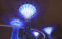 Supertree Grove Singapore Royalty Free Stock Images