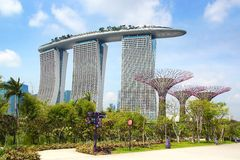 Supertree Grove, Singapore Stock Photos