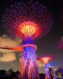 Supertree Grove in Singapore Royalty Free Stock Photo