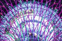 Supertree Singapore natt Arkivbild