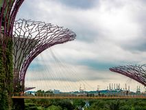 Supertree, Singapore - Nov 27, 2018: Tourists walking in the Supetree Grove area at the Gardens by the Bay in Singapore near. Marina Bay Sands hotel at summer stock images