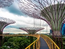 Supertree, Singapore - Nov 27, 2018: Tourists walking in the Supetree Grove area at the Gardens by the Bay in Singapore near. Marina Bay Sands hotel at summer royalty free stock images