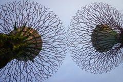 Supertree sotto cielo blu ai giardini dalla baia Fotografia Stock