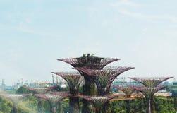 Supertreebosje, Tuinen door de baai Singapore Royalty-vrije Stock Afbeeldingen