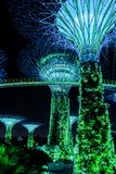 Supertreegarden by night in Singapore Stock Photography
