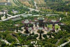 Supertrees在从上面的滨海湾公园,新加坡 免版税库存图片