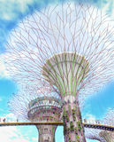 Supertrees between bridge at Gardens By the Bay Stock Photos