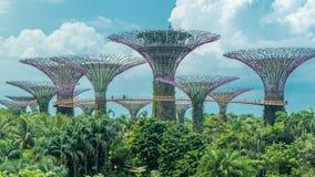 Supertrees em jardins pelo timelapse da baía filme