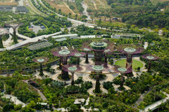 Supertrees in Gardens by the Bay from the top, Singapore Royalty Free Stock Images