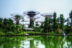 Supertrees greenhouse and dragonfly lake - Singapore - Gardens by the Bay. Taken on a beautifully sunny day in Singapore, at the Garden's by the Bay. The Royalty Free Stock Image