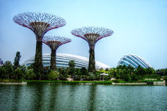 Supertrees greenhouse and dragonfly lake - Singapore - Gardens by the Bay stock photo