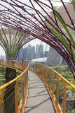 Supertrees Grove in Gardens by the Bay. Royalty Free Stock Photo