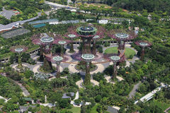 The Supertrees Grove at Gardens by the Bay Royalty Free Stock Image