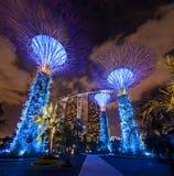 Supertrees, jardim pela baía Singapura imagem de stock royalty free