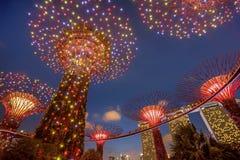 Supertrees lumineux dans les jardins par la baie la nuit, Singapour Photographie stock libre de droits