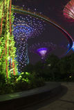 Supertrees in the new botanical gardens , Singapore Stock Photo