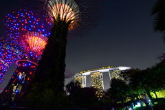 Supertrees at night. Gardens by the bay. Singapore Royalty Free Stock Image