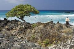 Supervisor de la actividad de la playa y del océano Imágenes de archivo libres de regalías