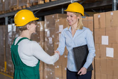 Supervisor y trabajador del almacenamiento Imagen de archivo libre de regalías