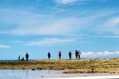 Supervivientes de la isla imagen de archivo