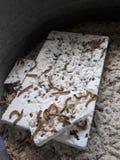Superworms äter plast- royaltyfria bilder